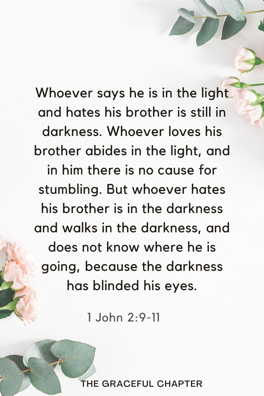 Whoever says he is in the light and hates his brother is still in darkness. Whoever loves his brother abides in the light, and in him there is no cause for stumbling. But whoever hates his brother is in the darkness and walks in the darkness, and does not know where he is going, because the darkness has blinded his eyes. 1 John 2:9-11
