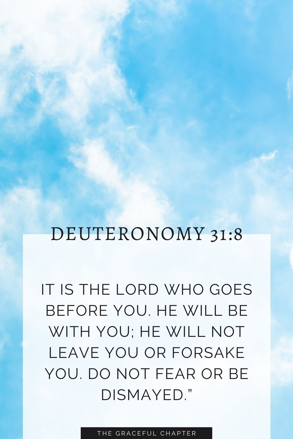 """It is the Lord who goes before you. He will be with you; he will not leave you or forsake you. Do not fear or be dismayed."""" Deuteronomy 31:8"""