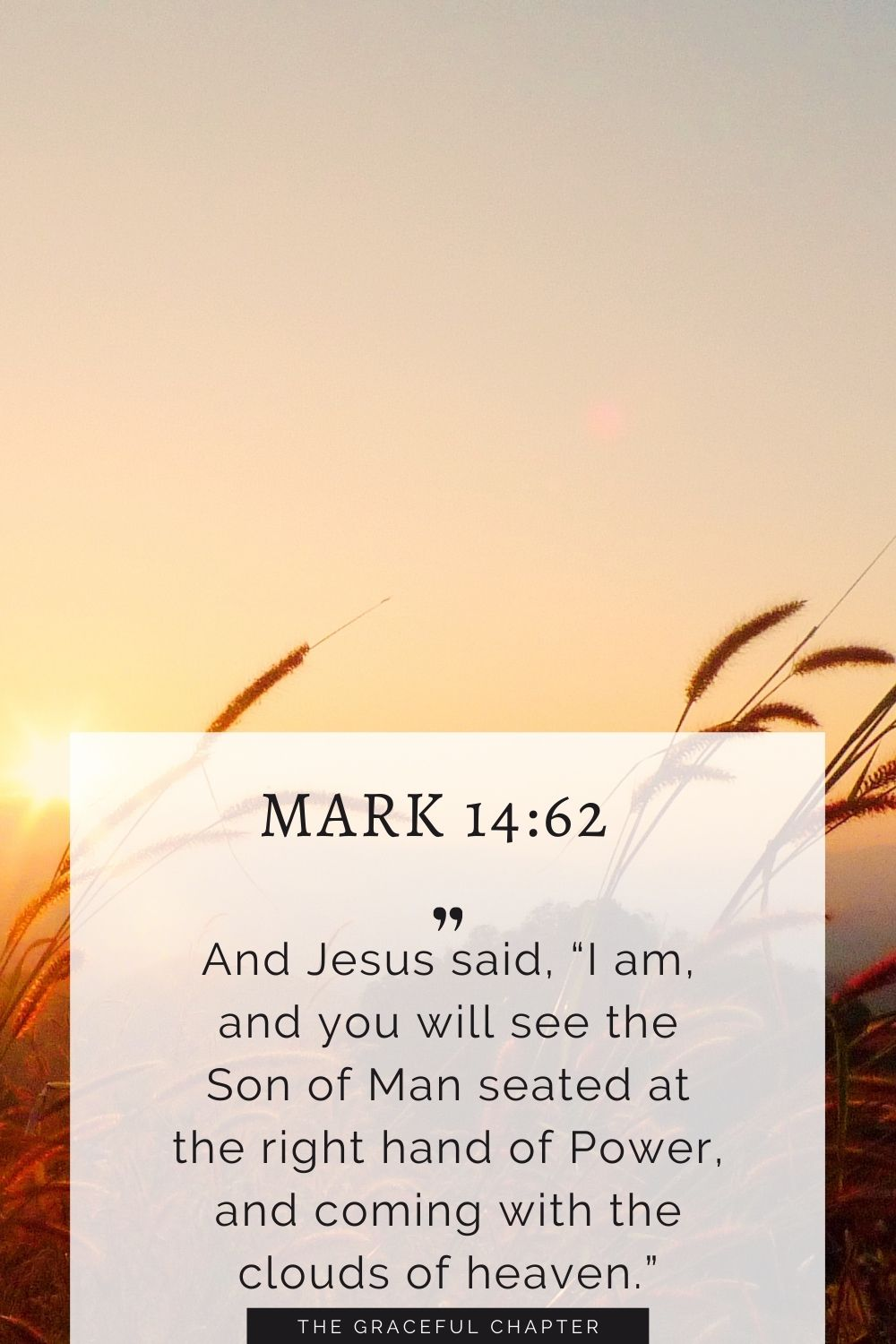 """And Jesus said, """"I am, and you will see the Son of Man seated at the right hand of Power, and coming with the clouds of heaven."""" Mark 14:62"""