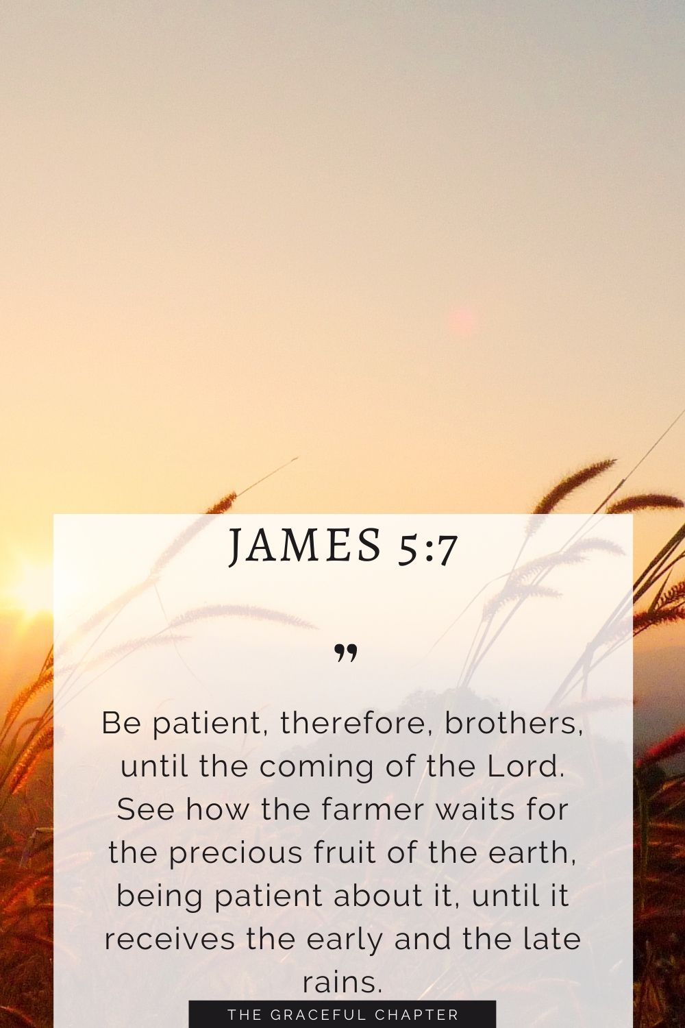 Be patient, therefore, brothers, until the coming of the Lord. See how the farmer waits for the precious fruit of the earth, being patient about it, until it receives the early and the late rains. James 5:7