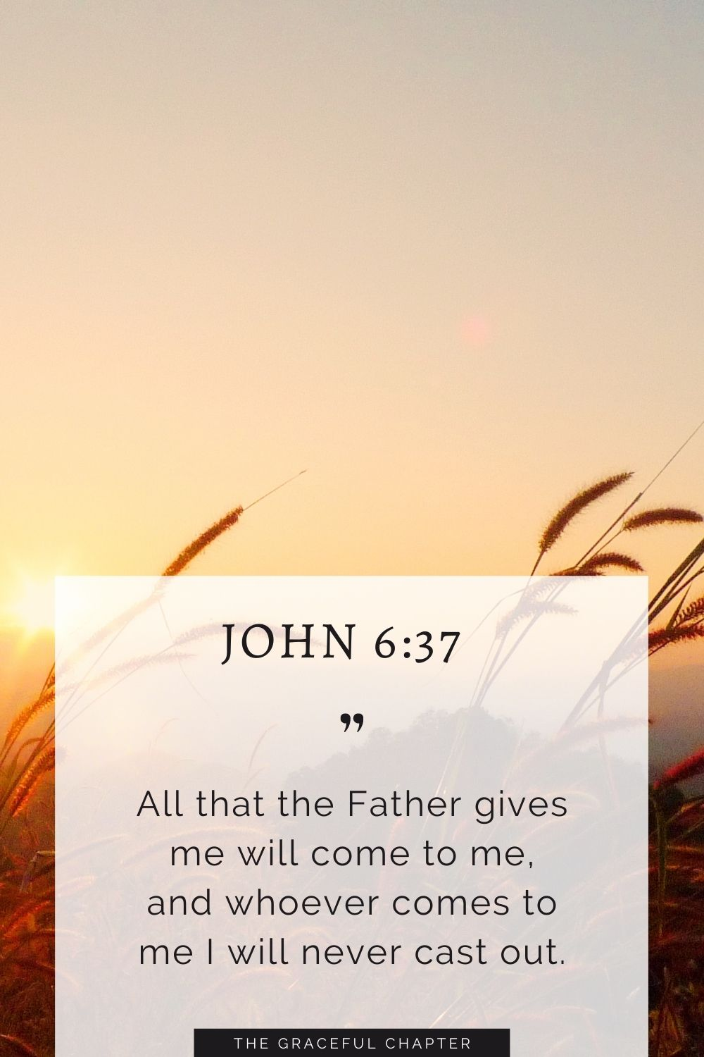 All that the Father gives me will come to me, and whoever comes to me I will never cast out. John 6:37