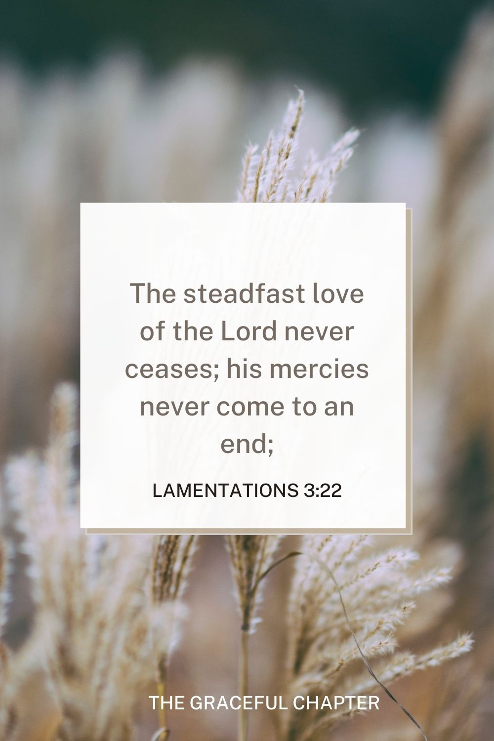 The steadfast love of the Lord never ceases; his mercies never come to an end; Lamentations 3:22