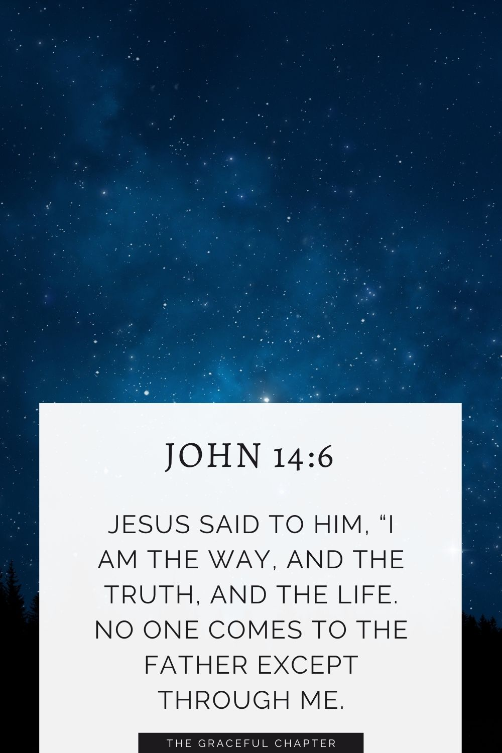 """Jesus said to him, """"I am the way, and the truth, and the life. No one comes to the Father except through me. John 14:6"""