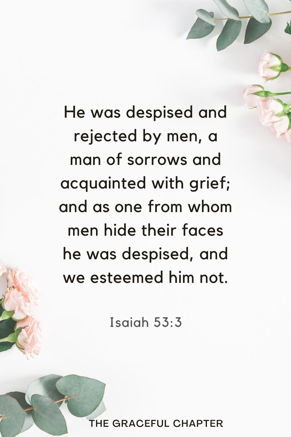 He was despised and rejected by men, a man of sorrows and acquainted with grief; and as one from whom men hide their faces he was despised, and we esteemed him not. Isaiah 53:3