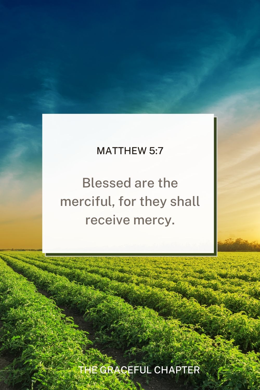 Blessed are the merciful, for they shall receive mercy. Matthew 5:7 - mercy bible verses esv