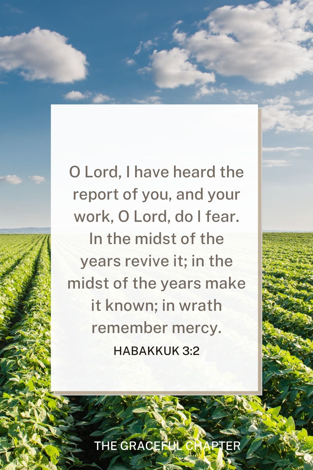 O Lord, I have heard the report of you, and your work, O Lord, do I fear. In the midst of the years revive it; in the midst of the years make it known; in wrath remember mercy. Habakkuk 3:2