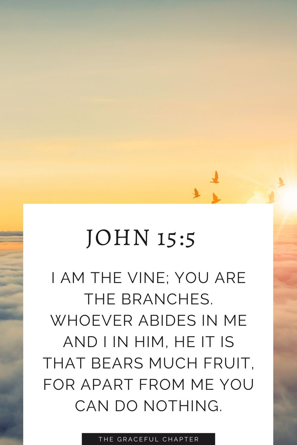 I am the vine; you are the branches. Whoever abides in me and I in him, he it is that bears much fruit, for apart from me you can do nothing. John 15:5