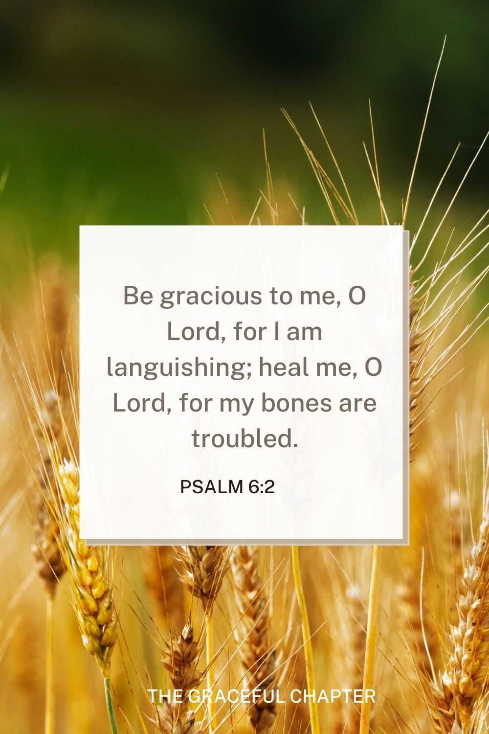 Be gracious to me, O Lord, for I am languishing; heal me, O Lord, for my bones are troubled. Be gracious to me, O Lord, for I am languishing; heal me, O Lord, for my bones are troubled. Psalm 6:2
