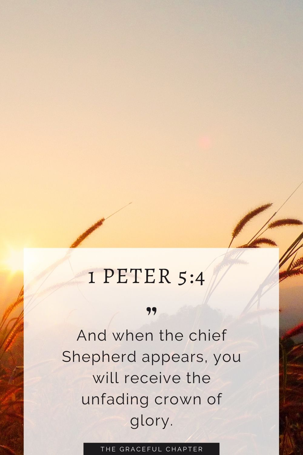 And when the chief Shepherd appears, you will receive the unfading crown of glory. 1 Peter 5:4