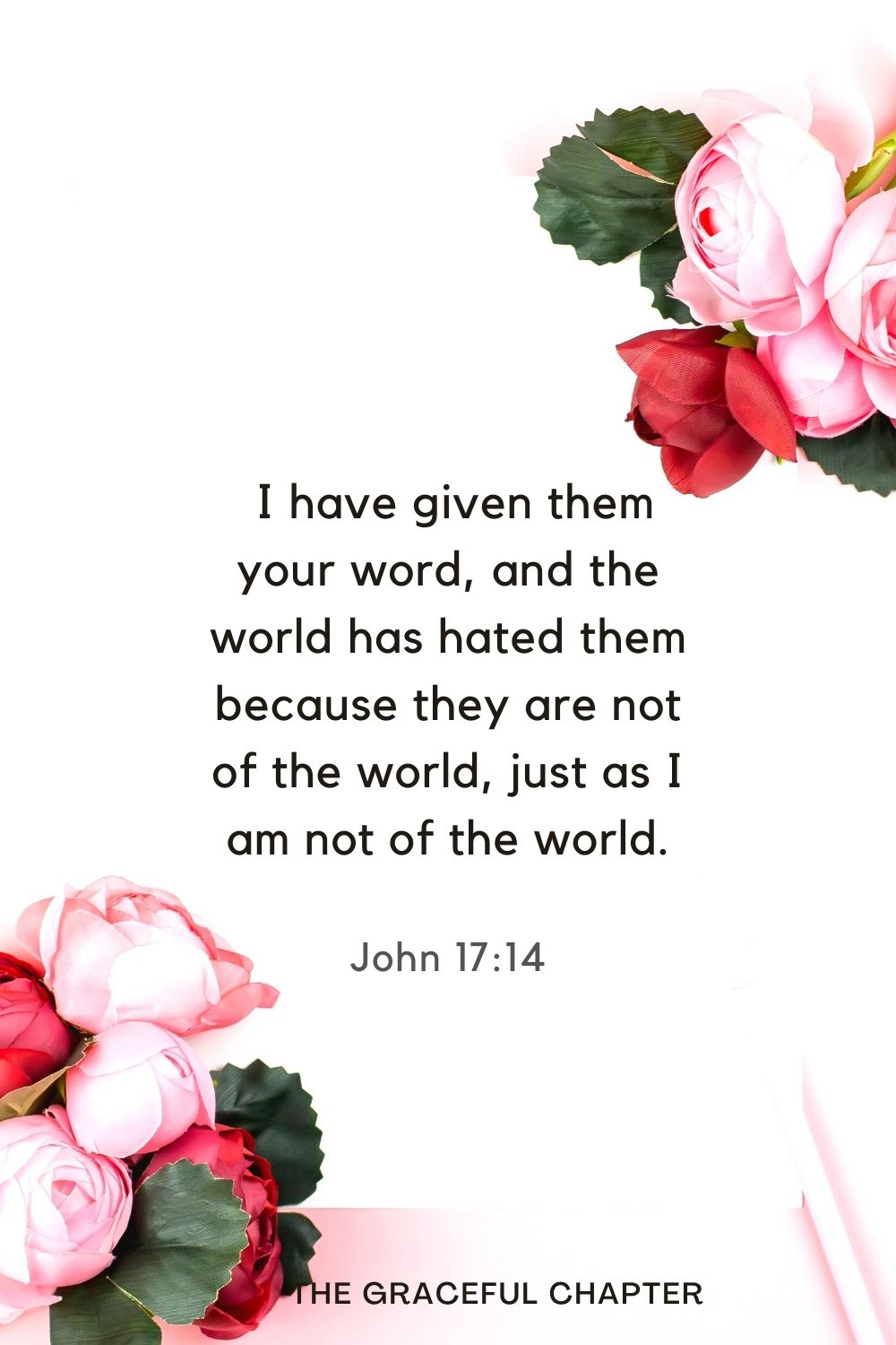 I have given them your word, and the world has hated them because they are not of the world, just as I am not of the world. John 17:14