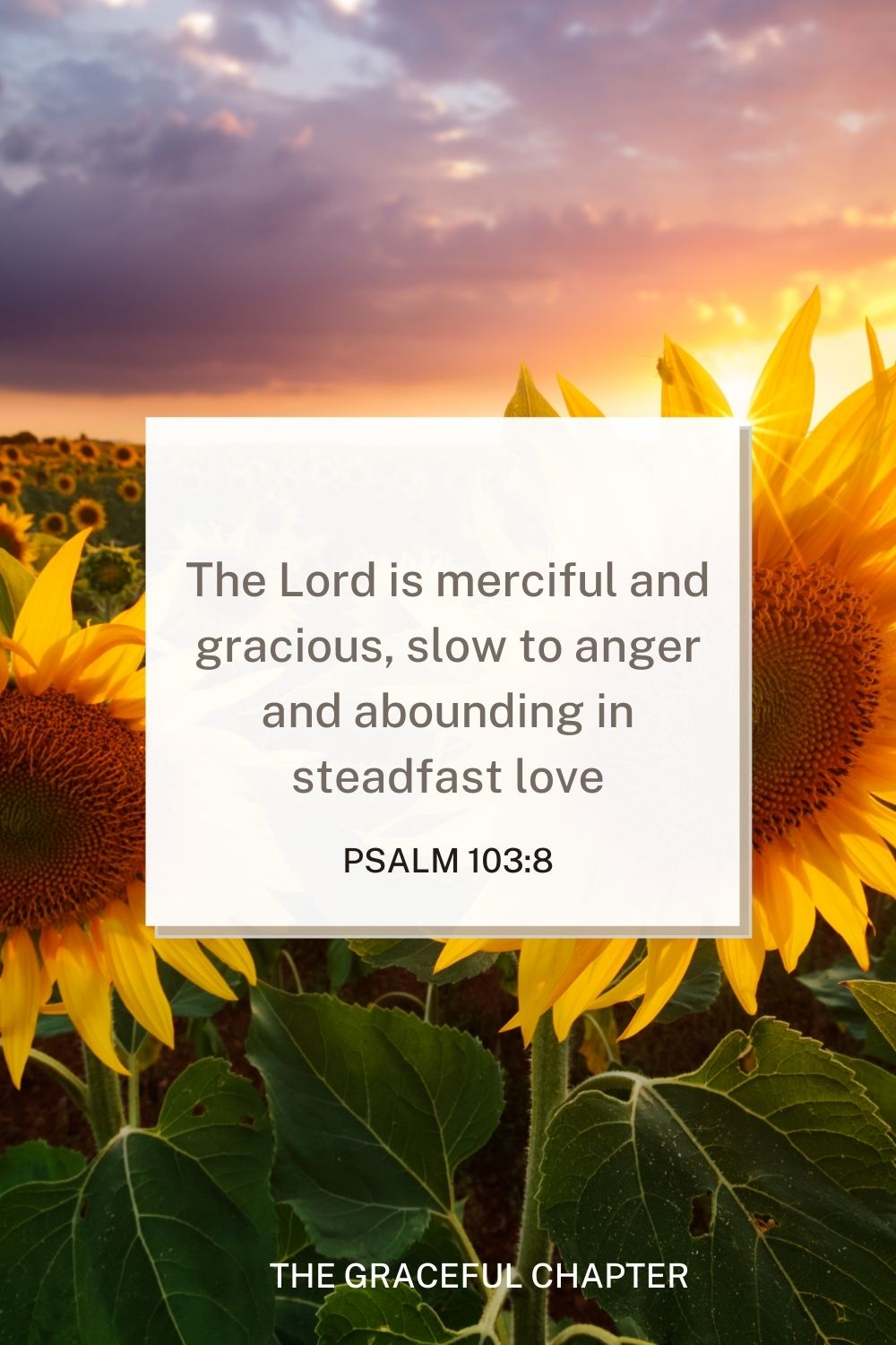 The Lord is merciful and gracious, slow to anger and abounding in steadfast love Psalm 103:8