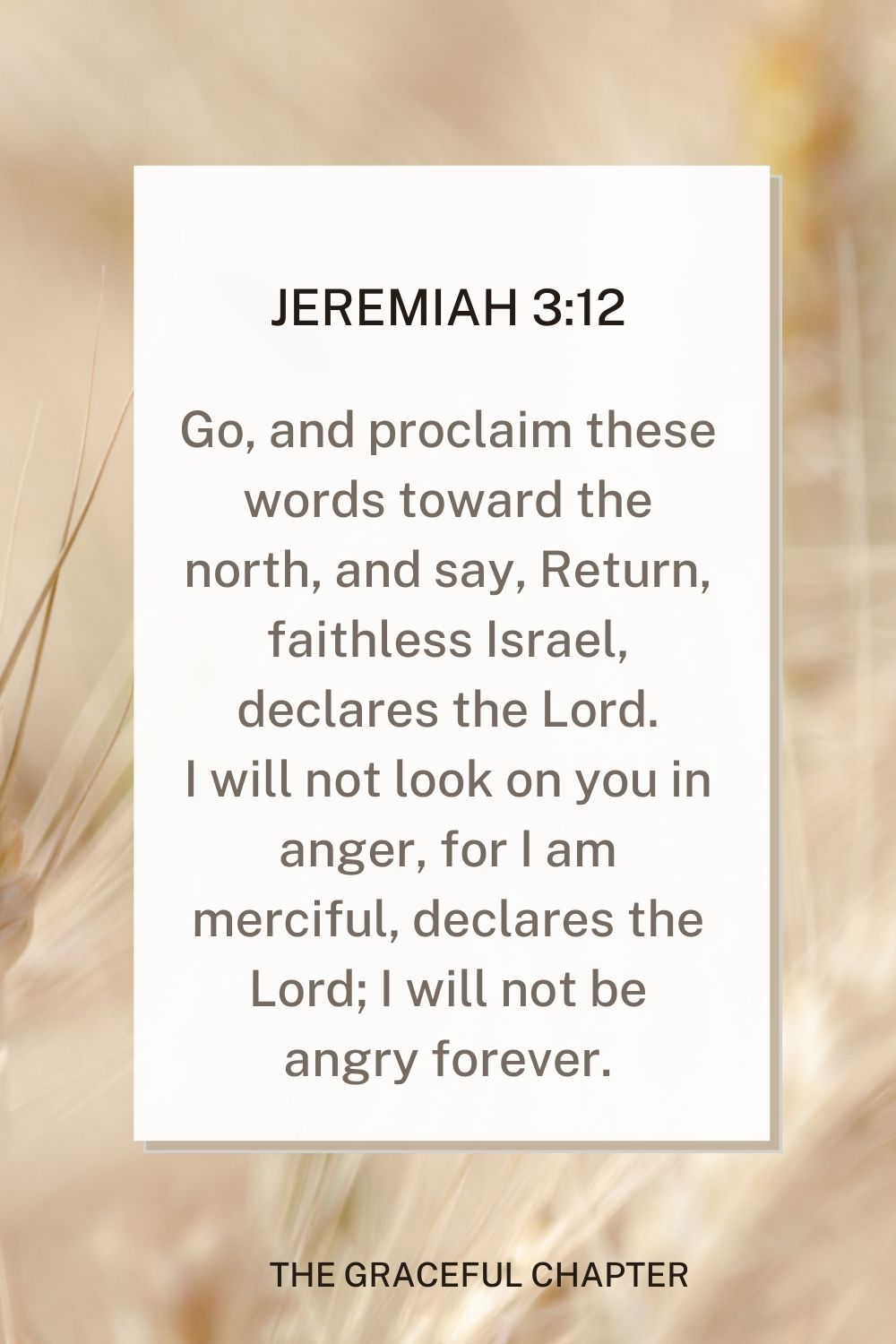 Go, and proclaim these words toward the north, and say, Return, faithless Israel, declares the Lord. I will not look on you in anger, for I am merciful, declares the Lord; I will not be angry forever. Jeremiah 3:12