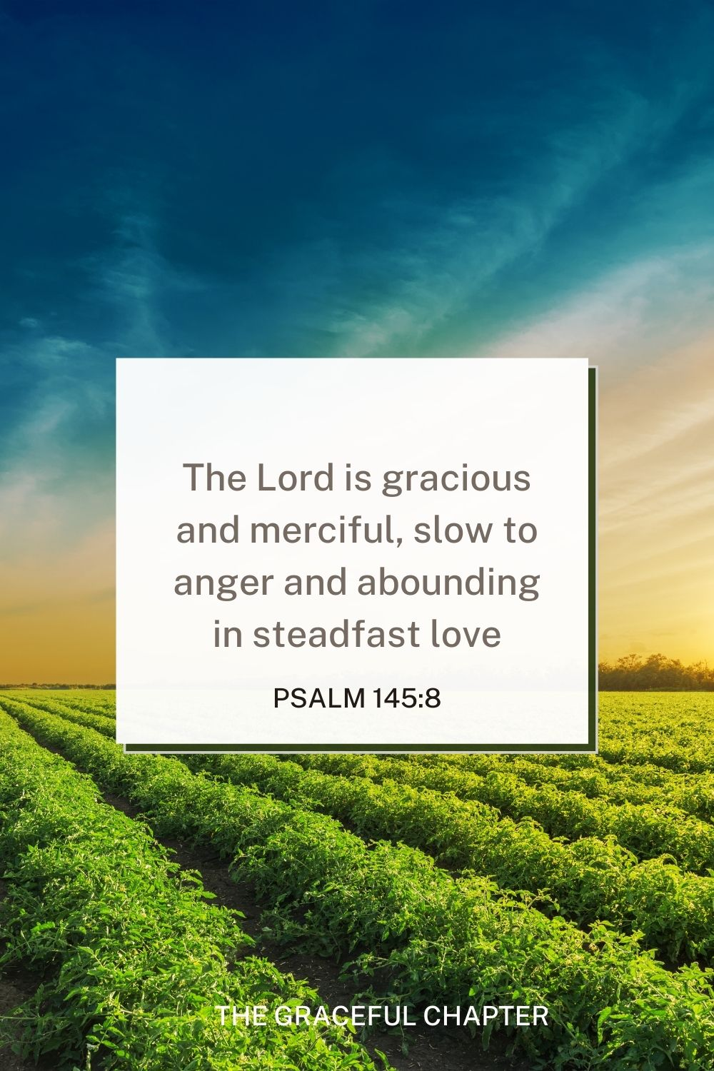 The Lord is gracious and merciful, slow to anger and abounding in steadfast love. 4