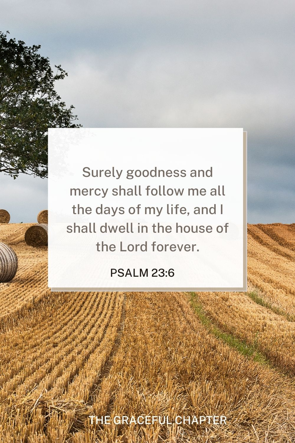 Surely goodness and mercy shall follow me all the days of my life, and I shall dwell in the house of the Lord forever. Psalm 23:6