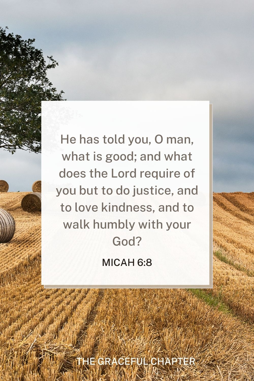 He has told you, O man, what is good; and what does the Lord require of you but to do justice, and to love kindness, and to walk humbly with your God? Micah 6:8