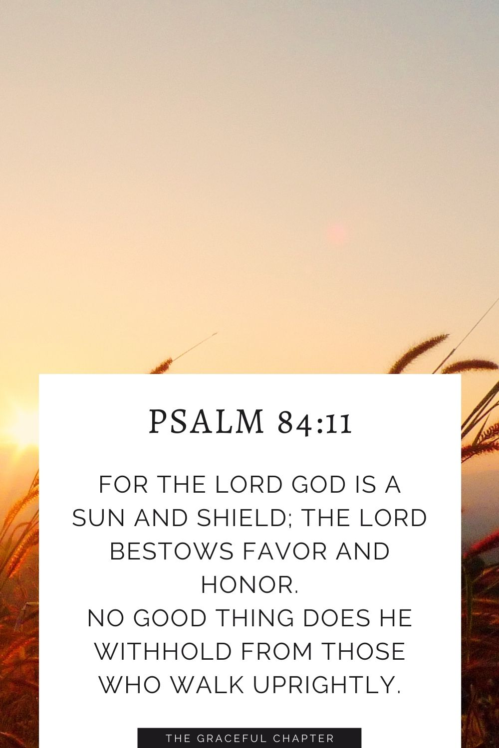 For the Lord God is a sun and shield; the Lord bestows favor and honor. No good thing does he withhold from those who walk uprightly. Psalm 84:11