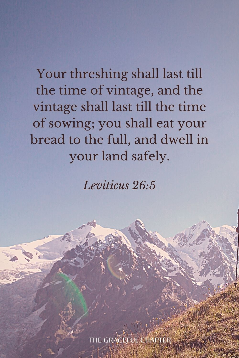 Your threshing shall last till the time of vintage, and the vintage shall last till the time of sowing; you shall eat your bread to the full, and dwell in your land safely. Leviticus 26:5