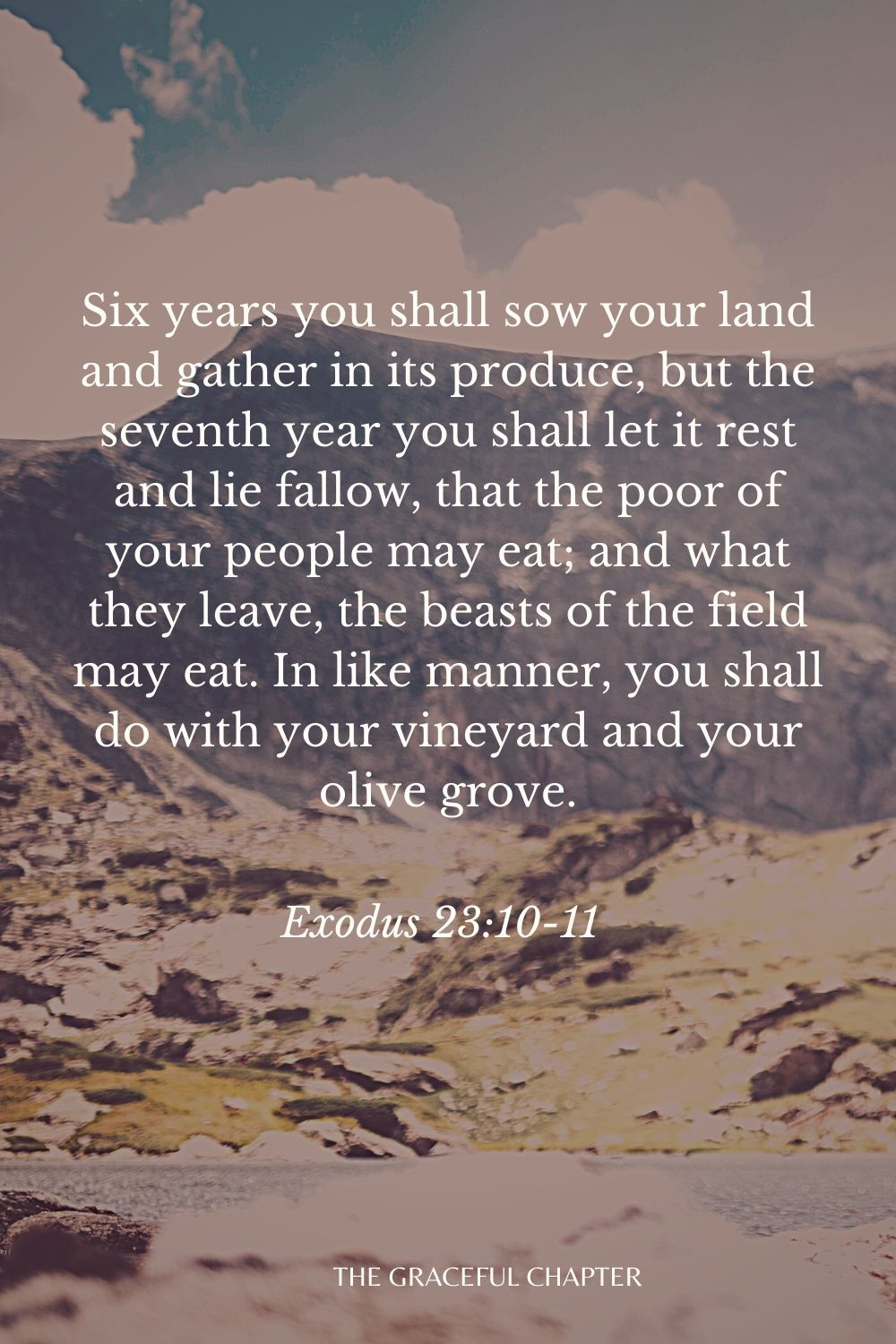 Six years you shall sow your land and gather in its produce, but the seventh year you shall let it rest and lie fallow, that the poor of your people may eat; and what they leave, the beasts of the field may eat. In like manner, you shall do with your vineyard and your olive grove. Exodus 23:10-11