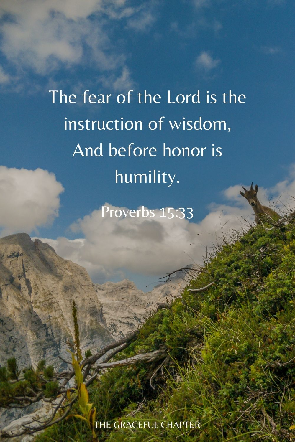 The fear of the Lord is the instruction of wisdom, And before honor is humility. Proverbs 15:33