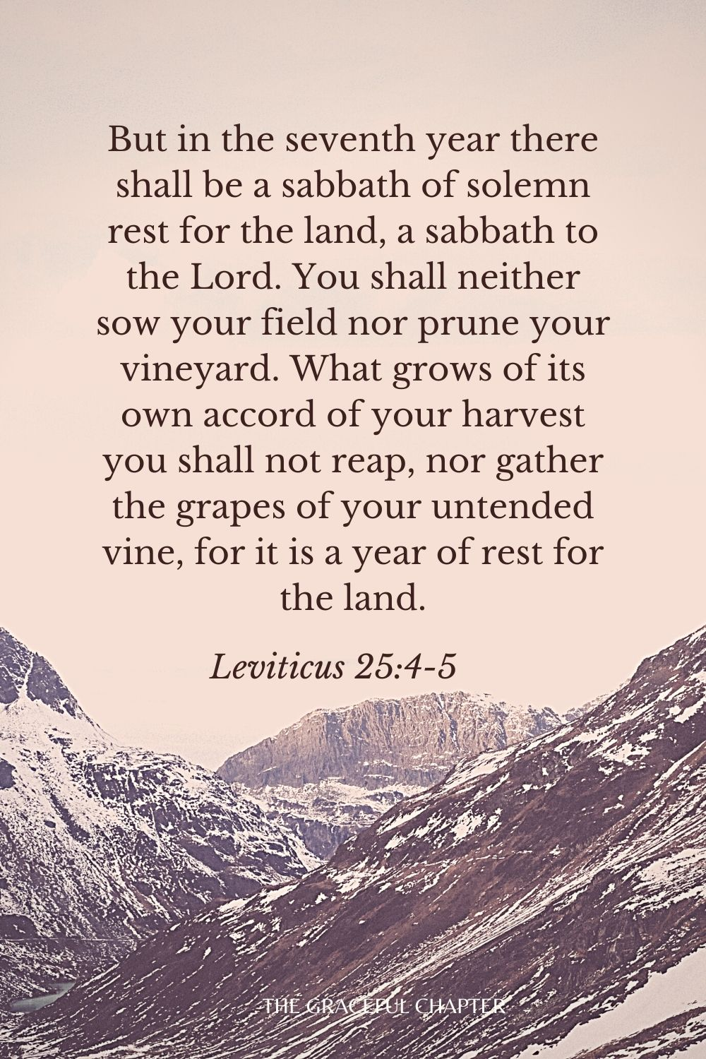 But in the seventh year there shall be a sabbath of solemn rest for the land, a sabbath to the Lord. You shall neither sow your field nor prune your vineyard. What grows of its own accord of your harvest you shall not reap, nor gather the grapes of your untended vine, for it is a year of rest for the land. Leviticus 25:4-5