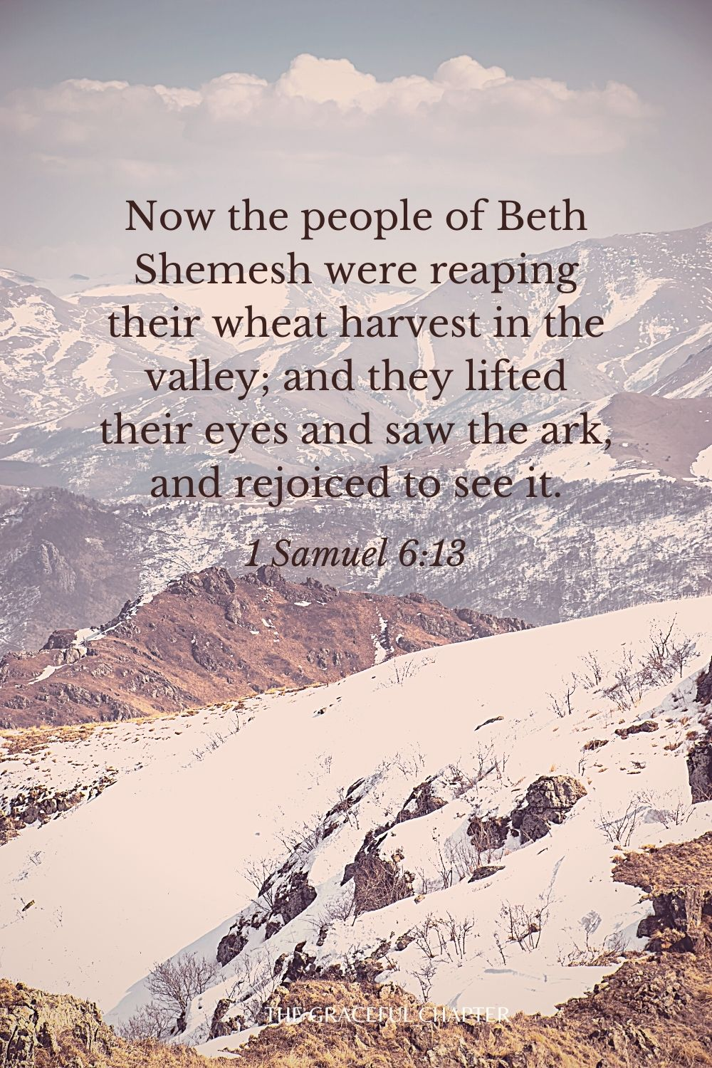 Now the people of Beth Shemesh were reaping their wheat harvest in the valley; and they lifted their eyes and saw the ark, and rejoiced to see it. 1 Samuel 6:13