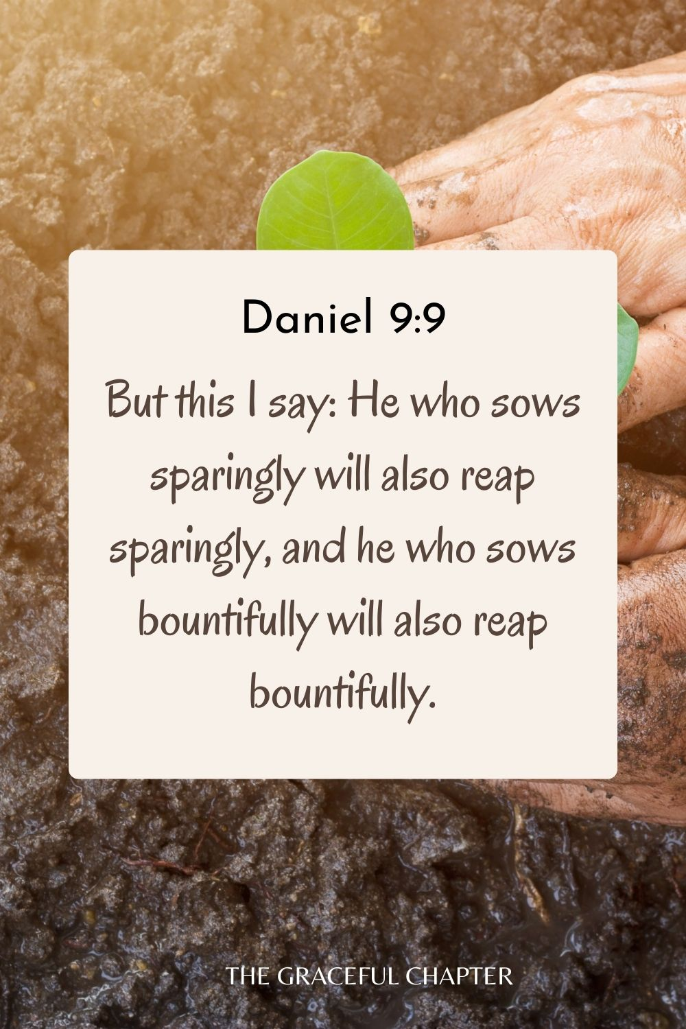 But this I say: He who sows sparingly will also reap sparingly, and he who sows bountifully will also reap bountifully. 2 Corinthians 9:6