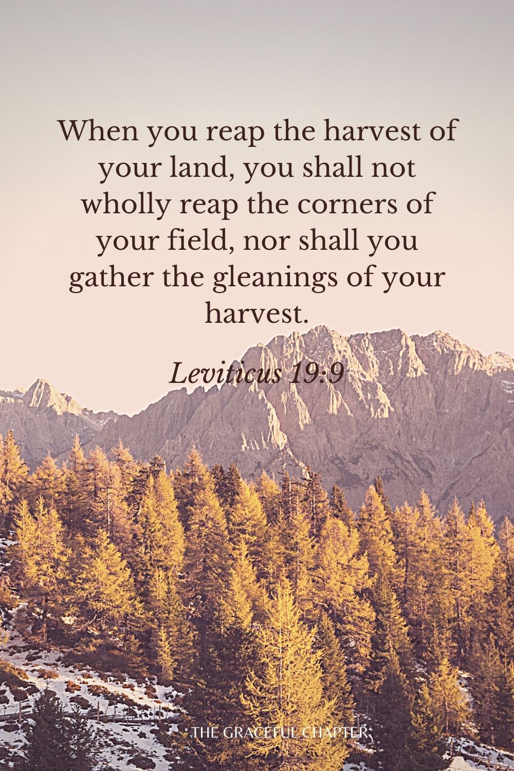 When you reap the harvest of your land, you shall not wholly reap the corners of your field, nor shall you gather the gleanings of your harvest. Leviticus 19:9