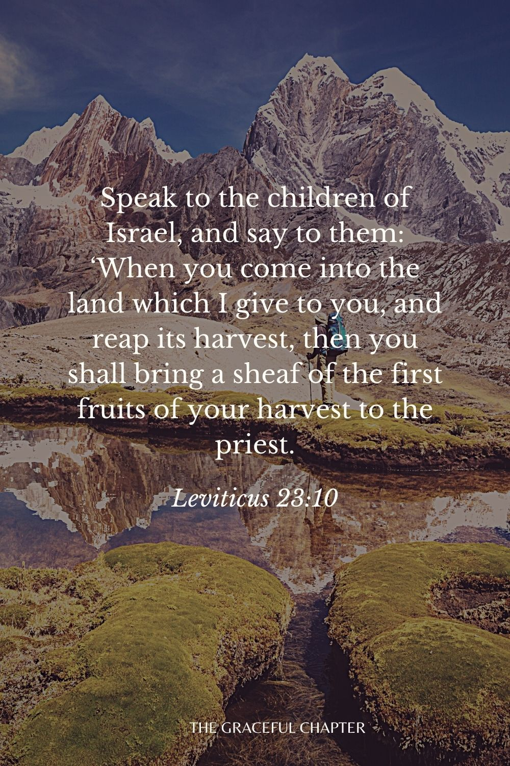 Speak to the children of Israel, and say to them: 'When you come into the land which I give to you, and reap its harvest, then you shall bring a sheaf of the first fruits of your harvest to the priest. Leviticus 23:10